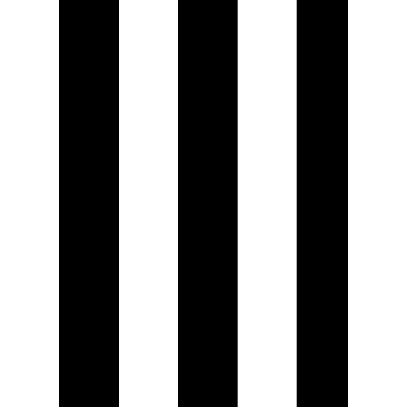 Alfombra marca vial Paso de Peatones 300x100 cm